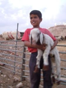 Bedouin Boy with New LambAz Za'ayyem Photo Credit: Dawn